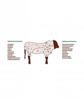 Quarto Posteriore intero di Chianina completo di Lombata 85 kg - Carni Pregiate Certificate - Tenuta Luchetti