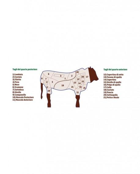 Coscio Quarto Posteriore di Chianina senza Lombata 40 kg - Carni Pregiate Certificate - Fattoria Luchetti