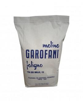 Farina tipo 00 grano tenero italiano - sacco da kg 10 - Molino Garofani