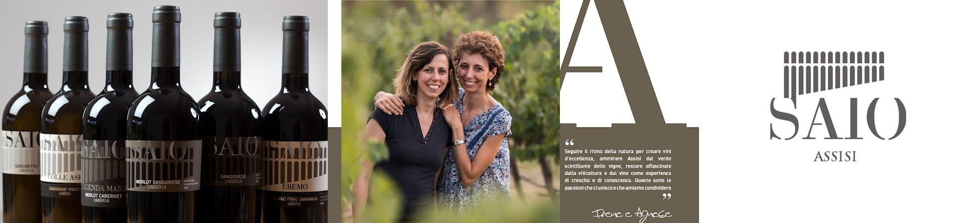 Vini SAIO Assisi - vendita online