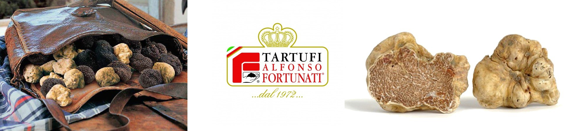 Tartufi freschi dell'Umbria - Alfonso Fortunati - vendita online